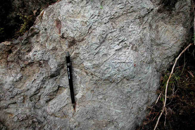 Geologists Find Out How Over 2.6 Ga Years Old Rocks Were Formed at Limpopo Complex