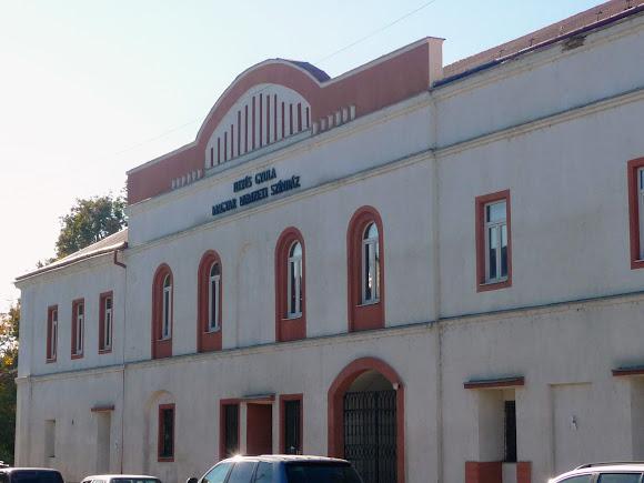 Берегово. Площа Кошута. Угорський національний театр імені Дьюла Ійеша