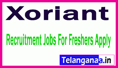 Xoriant Recruitment Jobs For Freshers Apply