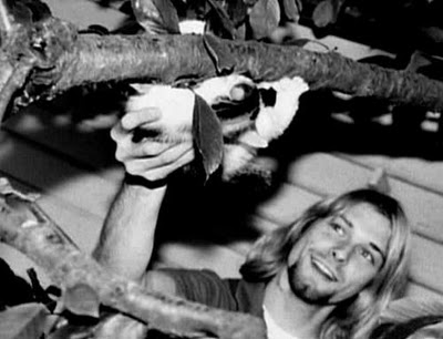 Kurt Cobain acariciando un gato en un árbol
