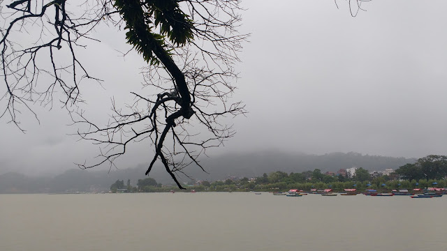 View at Phewa Lake