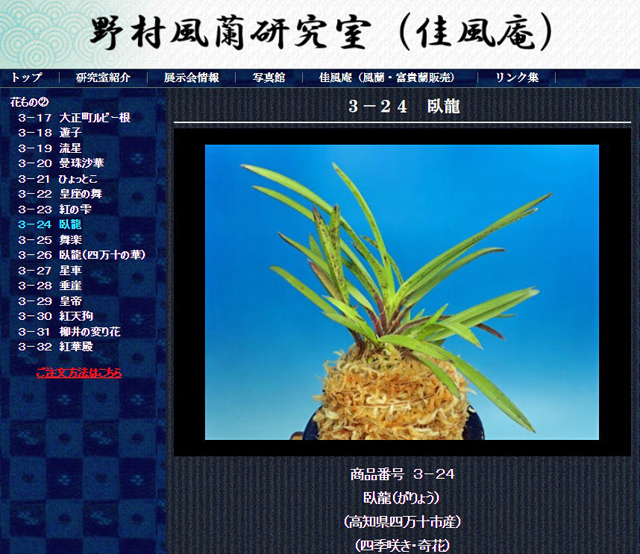 http://www.fuuran.jp/3-24html