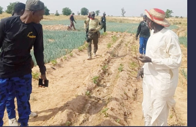 NSCDC Intensify Protection Of Farmers And Farmlands, As Nigerians Seek More Funding For Security Agency