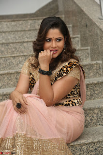 Shilpa Chakravarthy in Lovely Designer Pink Saree with Cat Print Pallu 052.JPG