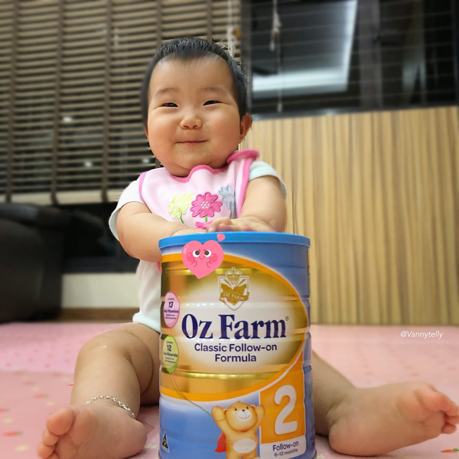 Vanny's Telling Everything.: Infant Formula Milk Review