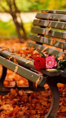 Romantique pensee d'amour