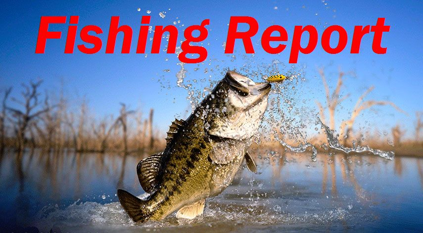 West neck creek ramblings looks like anglers had a for Seven b s fishing report