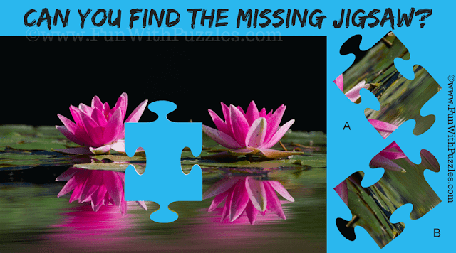 In this Jigsaw Puzzle you have to find missing Jigsaw piece of the Aquatic Plants Puzzle Picture