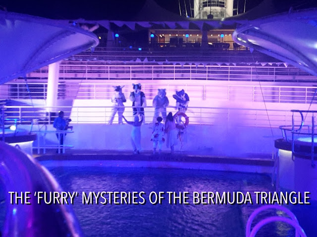Furries going through the Bermuda triangle
