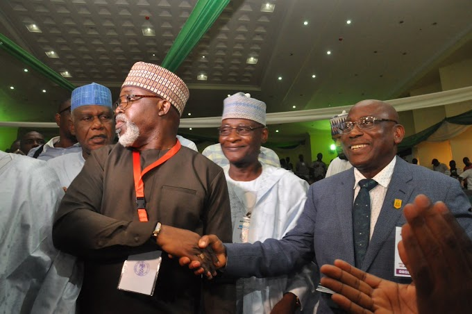 Amaju Pinnick re-elected as NFF President, makes history
