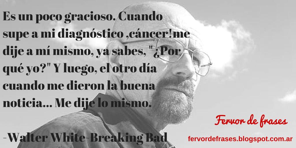 Fervor De Frases Walter White Breaking Bad