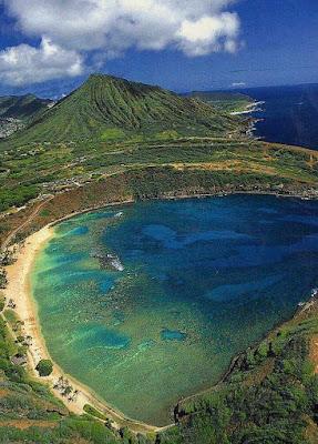Tropical Fish Sanctuary