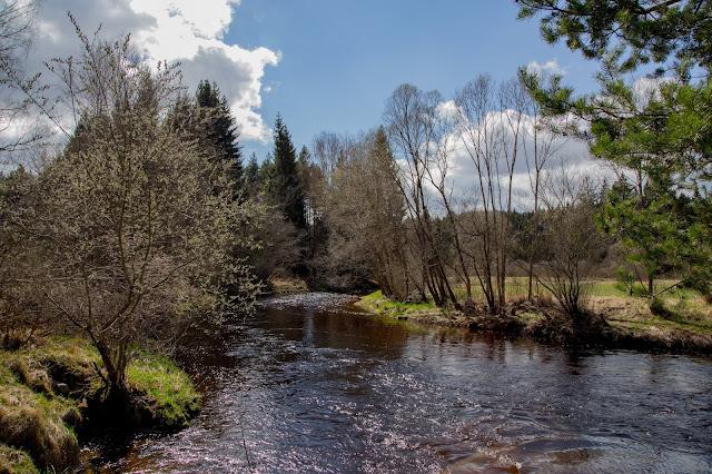 Rundweg im Säumermoor - Soumarské rašeliniště | Wandern im tschechischen Böhmerwald | Nationalpark Sumava | Soumarský Most | Wandern Šumava 11