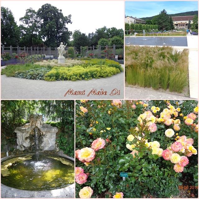 Rose Garden Baden - Rosarium Baden