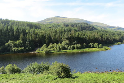 A lake and woodland, behind which stands the summit of Moel Siabod.