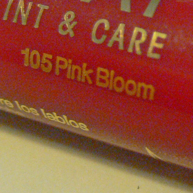 astor 105 pink bloom
