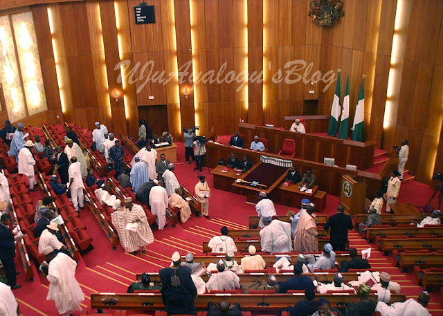 Senate erupts in uproar after lawmaker accused Buhari of incompetence
