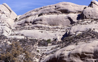 Grey rocks in California, some small bushes growing at a lower level, the rocks have face-like features