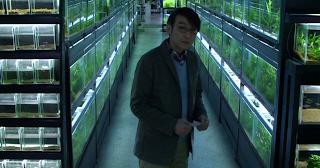 Risultati immagini per cold fish film