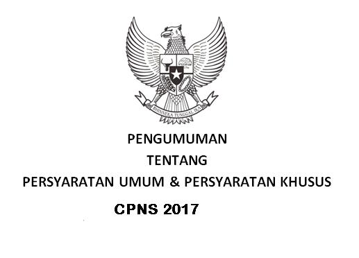 penerimaan cpns 2017