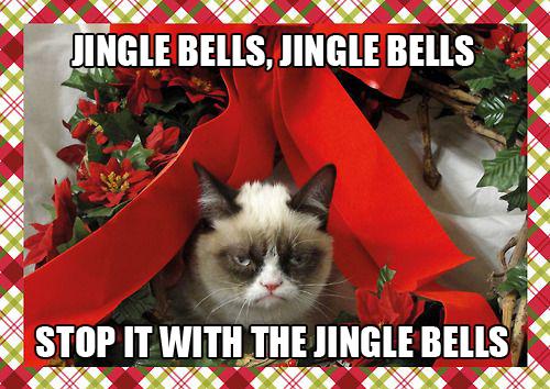 Grumpy Cat Christmas Memes Kingle Bells