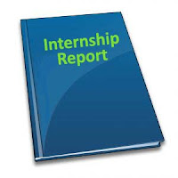 mHD Biz Insights: Internship Reports Unlimited Collection