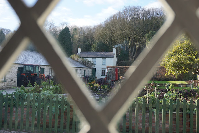 the kitchen garden at Glenarm Castle - Carrie Gault