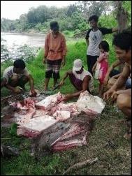 Pemancing Ini Terkejut Setelah Melihat Hasil Tangkapannya