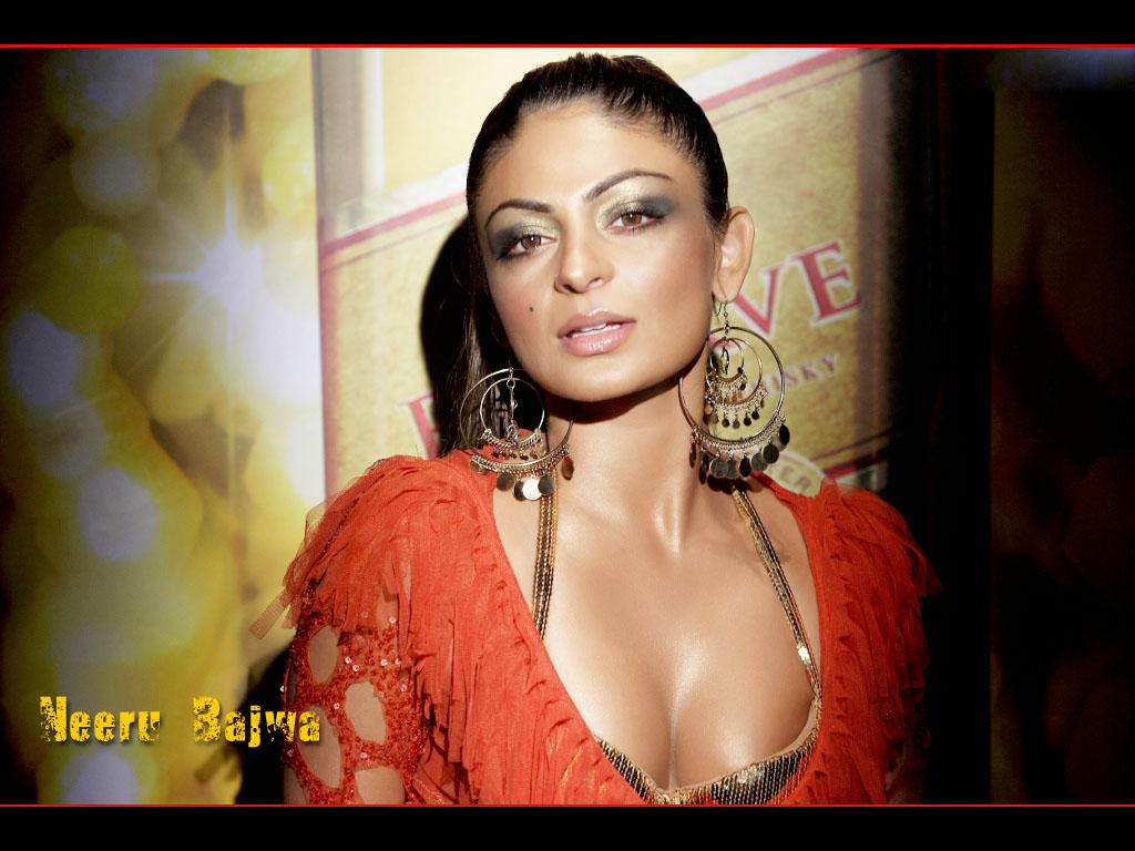 Hd Wallpapers Hot Indian Actress Neeru Bajwa Hd -3773