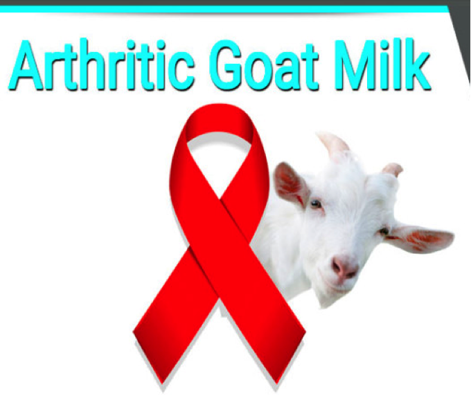 Biologizing: Cure for HIV Found in Arthritic Goat Milk?!