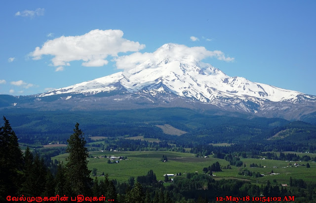 Mount Hood View from Bald Butte