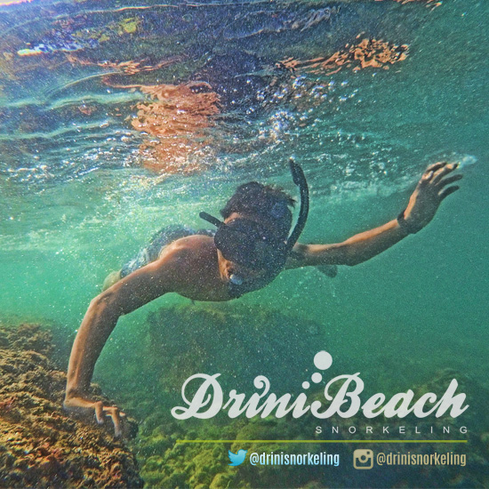 drini beach snorkeling
