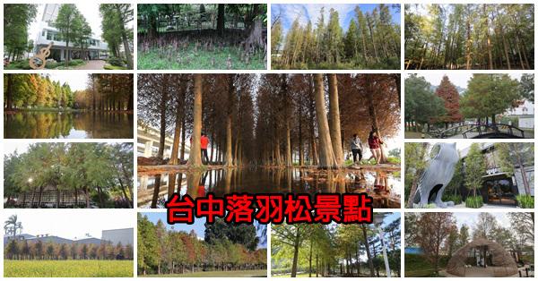 台中賞落羽松37個景點,找時間出門散散步吧,持續更新