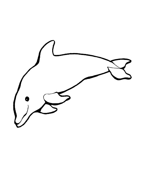 Dolphin Coloring Pages Throughout Dolphin Pictures To Color
