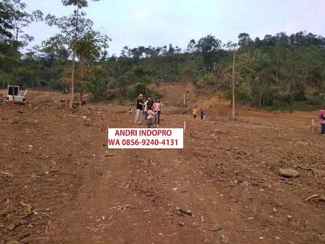 Investasi Kebun Agrowisata Kavling Buah lantaburro Karyamekar Cariu - Lantaburo Propertindo