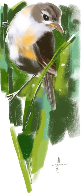 Reed Warbler Bird painting by Artmagenta