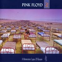 [1987] - A Momentary Lapse Of Reason