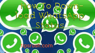 WhatsApp video and picture status