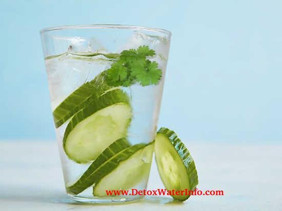 Cucumber lemon coriander (cilantro) water