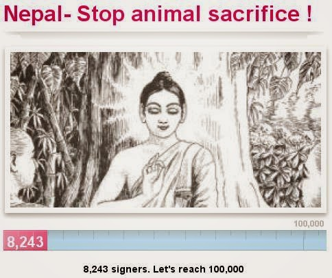 https://secure.avaaz.org/en/petition/End_animal_sacrifice_in_Nepal/sign/?aIYiAbb