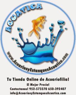 www.AcuariosyEstanquesAcuatica.com