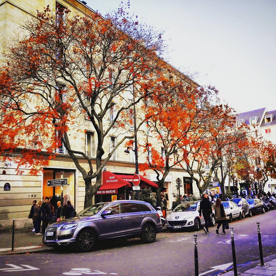 Autumn Colors in Le Marais Paris I Travelling Hopper