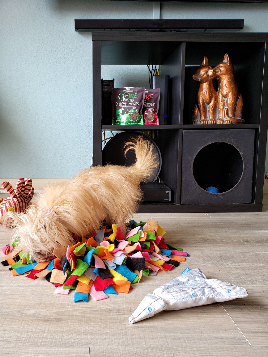 5 Simple Tips To Help Fuel Your Small Breed Dog- Snuffle Mat  #WellnessCORESmallBreed #AD