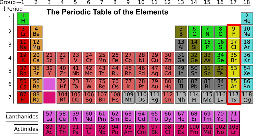 Halogen in periodic table