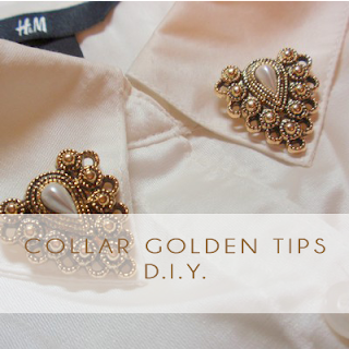 Collar Golden Tips