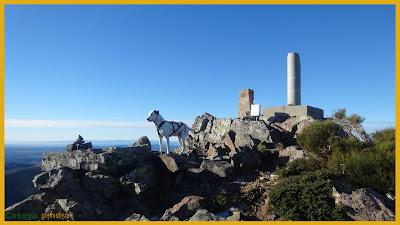 Cumbre y vértice del Cerro Pedroso