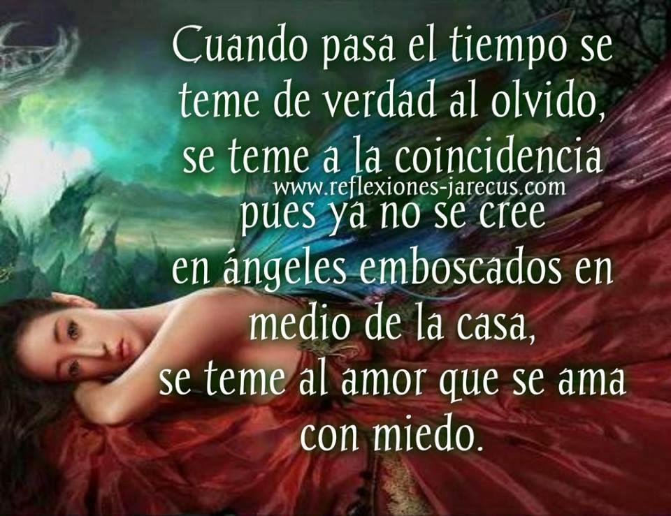 SE TEME...  Cuando pasa el tiempo se teme de verdad al olvido se teme a la coincidencia pues ya no se cree en ángeles emboscados en medio de la casa...
