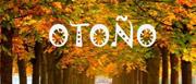 QSN: Alimentos para el otoño