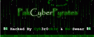 Pak Cyber Combat Squad hackers hacked more than 100 websites