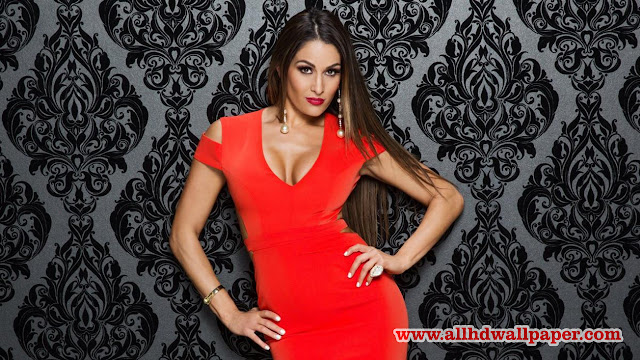 Nikki Bella Stock Photos